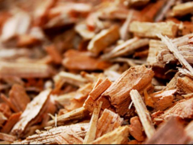 Filière bois énergie sur le territoire